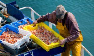 pêcheurs et marins